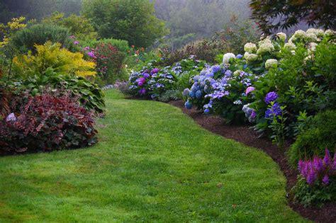 hydrangea garden design top rated best camden maine waterfront inn with acres of private beautiful gardens cedarholm