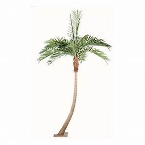 Palmier Artificiel Gifi : arbres exotiques palmiers artificiels artificielles reflets nature lyon ~ Teatrodelosmanantiales.com Idées de Décoration