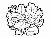 Foodhero Leek Blackline Bulletin sketch template