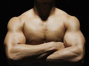 Huge Arms Workout Guide  The Best Exercises For Massive