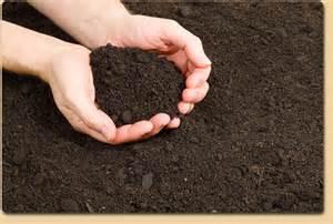 Terre Acide Définition top soil