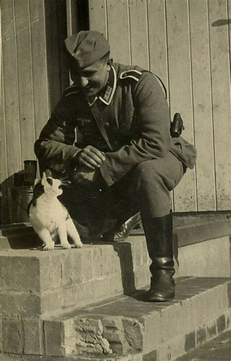 ww photo wwii german soldier  angry cat world war