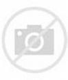 Karin Dreijer Discography at Discogs