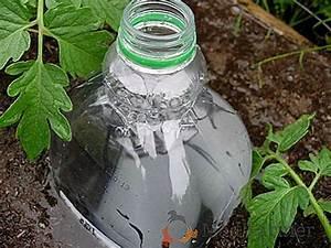 Goutte A Goutte Bouteille : les secrets de l 39 irrigation goutte goutte partir de bouteilles en plastique avec vos propres ~ Dode.kayakingforconservation.com Idées de Décoration