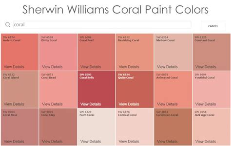 best 25 coral paint colors ideas on coral