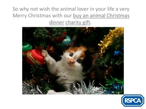 rspca charity christmas gifts