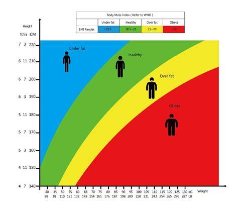 bmi calculator  bmi chart  find  body mass