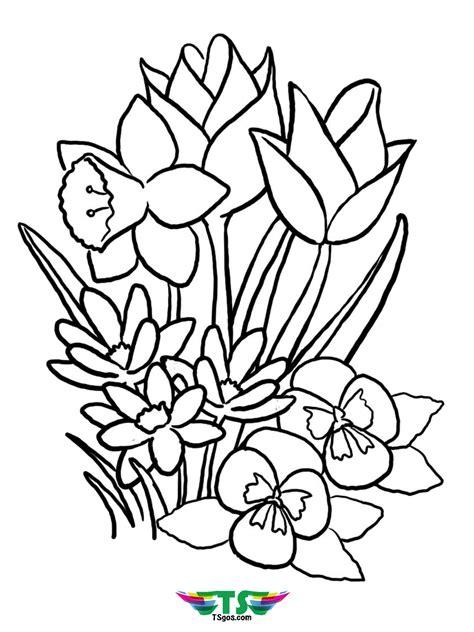 print beautiful spring flower coloring