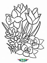 Coloring Spring Flower Flowers Tsgos sketch template