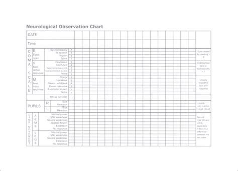 neurological template chart template 10 free sle exle format free premium templates