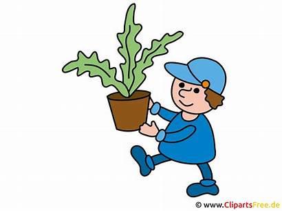 Clipart Jardinier Utklipp Gardener Gaertner Clipartsfree Clip