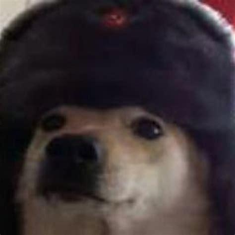 Comrade Dog Youtube
