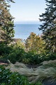 Enjoy our oceanfront home on Vancouver Island, BC, Canada ...