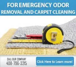 Carpet Cleaning Santa Clara, Ca  4087963215  Steam Clean. San Francisco Cemetery Health Science Schools. Order Online Business Cards New York Bonds. Japan Sovereign Wealth Fund Mba In Finance. Letters Of Intent For Graduate School. Foundation Repair Arkansas Ftse Social Index. Money Markets Interest Rates. Sharepoint Event Registration. Partners Research Management