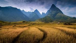 nature, Landscape, Mountain, Clouds, Vietnam, Field, Trees ...
