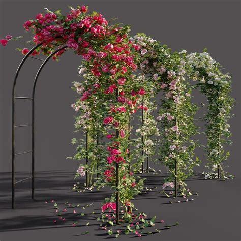 arch pergola  roses  model   cgsouqcom