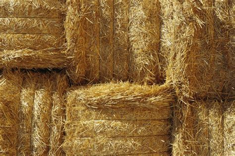 How to Build a Straw Bale Compost Bin