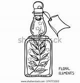 Bottle Potion Drawing Bottles Coloring Glass Clip Sketch Template Adults sketch template