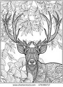 Forest Adult Deer Coloring Pages