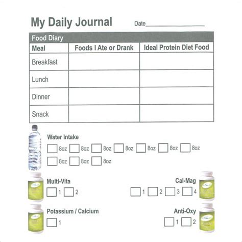 Daily Food Journal Template by Sle Daily Log Template 15 Free Documents In Pdf Word
