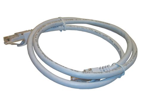 Cat Patch Cable Foot Feet Category