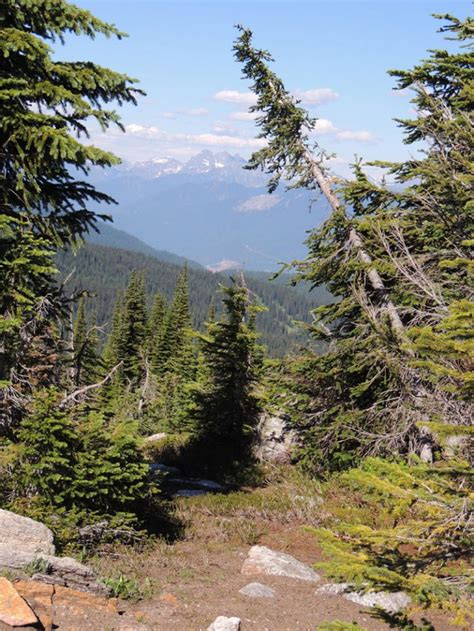 Why I m better off hiking alone and why you might be too