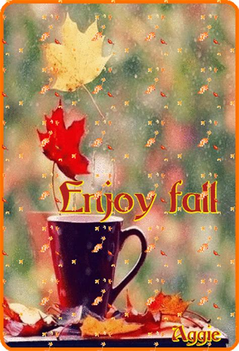 enjoy fall pictures   images  facebook
