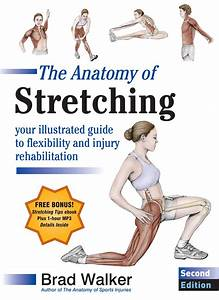 The Anatomy Of Stretching  Second Edition By Brad Walker