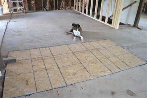 cork flooring and dogs top 28 cork flooring dogs cork floors and dogs 25 best ideas about cork flooring cork
