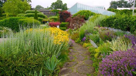 gardens in toronto toronto botanical garden in toronto ontario expedia