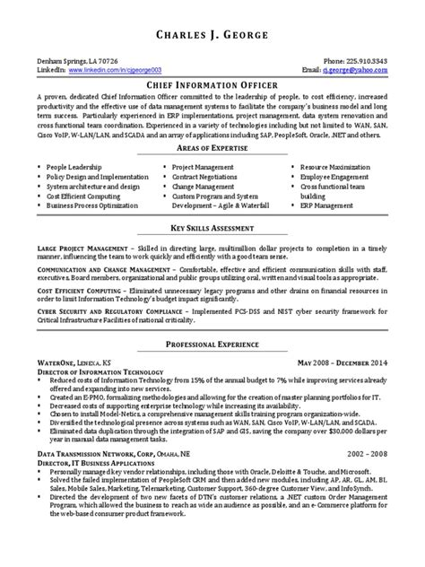 Vp Information Technology Resume by Resume Profile Exles Electrician Exle Resume Of Physiotherapist Federal Government Resume