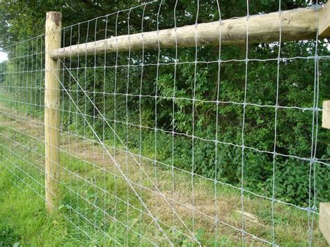Wire Netting Applications