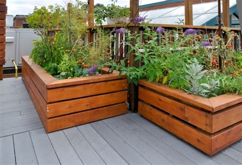 Gardening For The Elderly And Disable. Raised Garden Beds