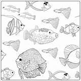 Aquarium Fish Drawing Coloring Getdrawings Sea Printable Ocean sketch template