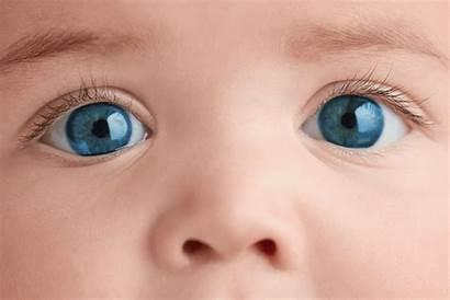 Eye Wsj