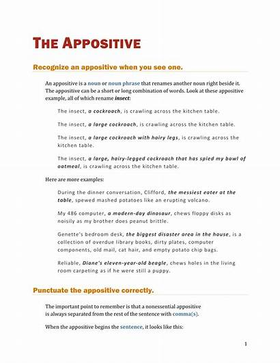 Appositive Examples Sentence Pdf Appositives Example