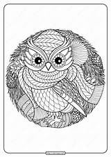 Coloring Owl Printable Pdf Winter Tweet Whatsapp sketch template