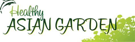 healthy asian garden healthy asian garden