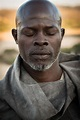 know Djimon Hounsou Net Worth and his income source ...