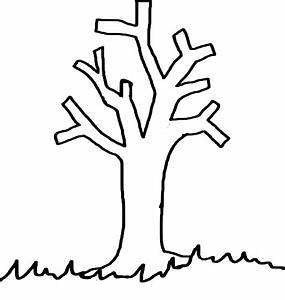 Coloriage Arbre Chene.Dessin D Arbre Sans Feuille Simple Coloriage Automne Arbe