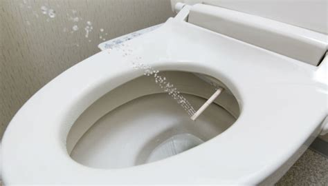 Best Home Bidet by Best Home Bidet Flushing The Bad Ones Out
