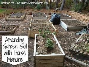 Amending garden soil with horse manure one hundred for Horse manure for garden