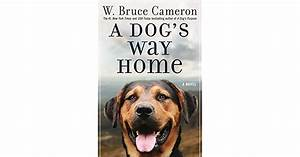 A Dog39s Way Home By W Bruce Cameron
