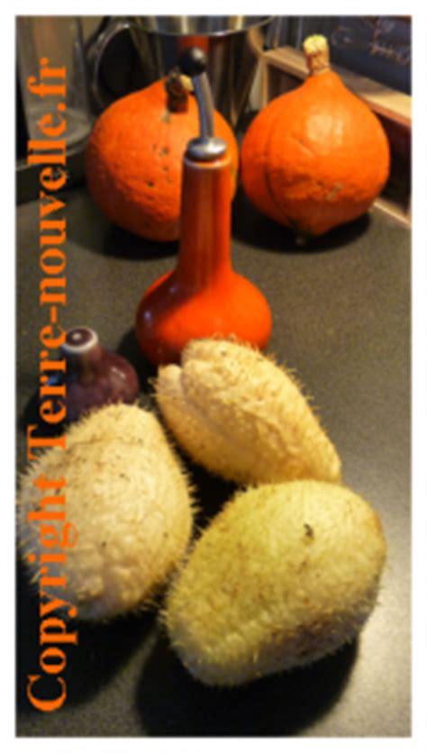 cuisiner des christophines christophine recettes terre nouvelle