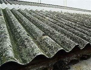 Renovation Toiture Fibro Ciment Amiante : dossier amiante ~ Nature-et-papiers.com Idées de Décoration