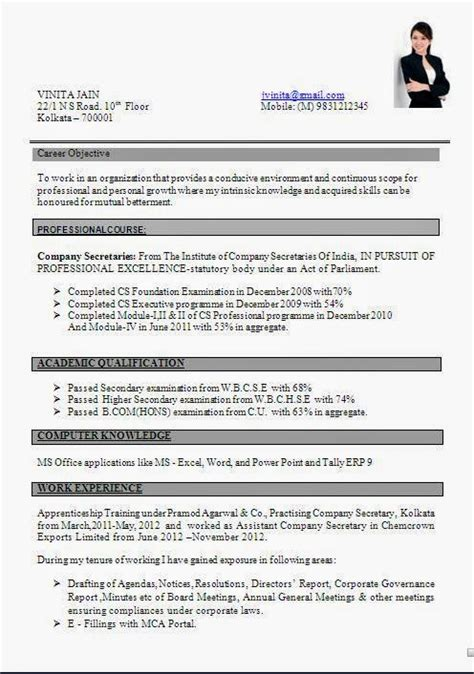 Resume Format Doc by Cv Format Doc