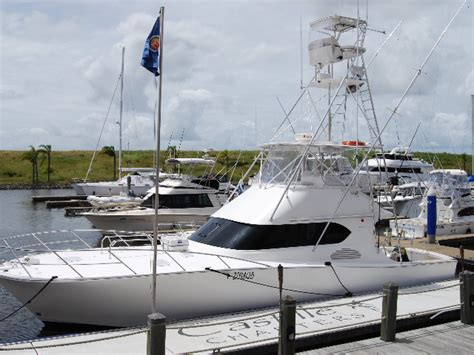 Charter Boat Services by Castille Fishing Luxury Boat Charters Gold Coast Luxury
