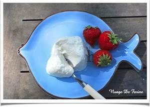 Présure Pour Fromage : fromage blanc et ou petits suisses sans pr sure multi d lices nuage de farine ~ Melissatoandfro.com Idées de Décoration