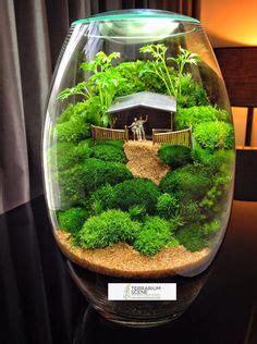 plant terrarium set miniature moss garden  decorative apothecary jars wedding table