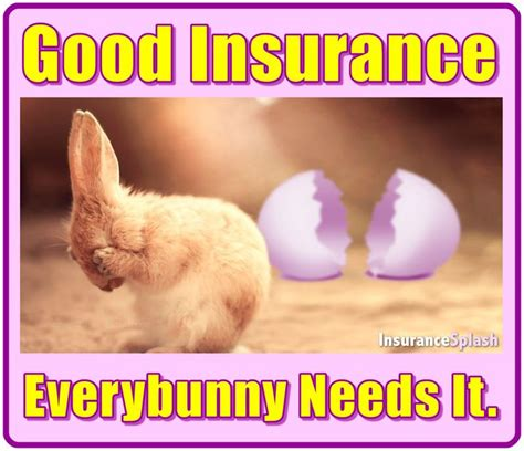 Insurance Memes - best 25 insurance humor ideas on pinterest farmers life insurance life insurance quotes and